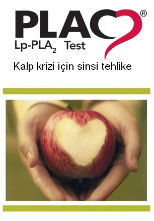 plac test